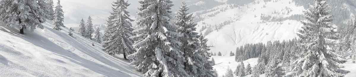 Bayern Sudelfeld Winter Panorama 114933316