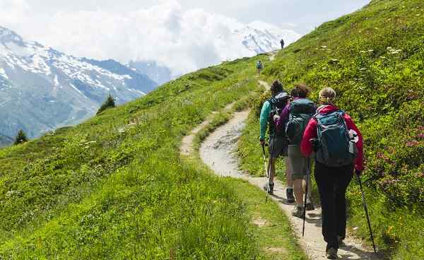 Group of hikers follow a trail in the French Alps above Chamonix 571010119