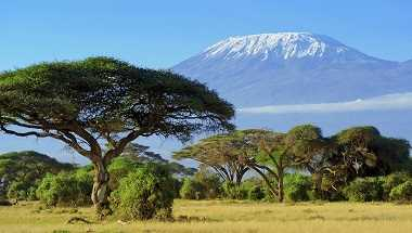 Kilimanjaro - Machame Route via Stella Point
